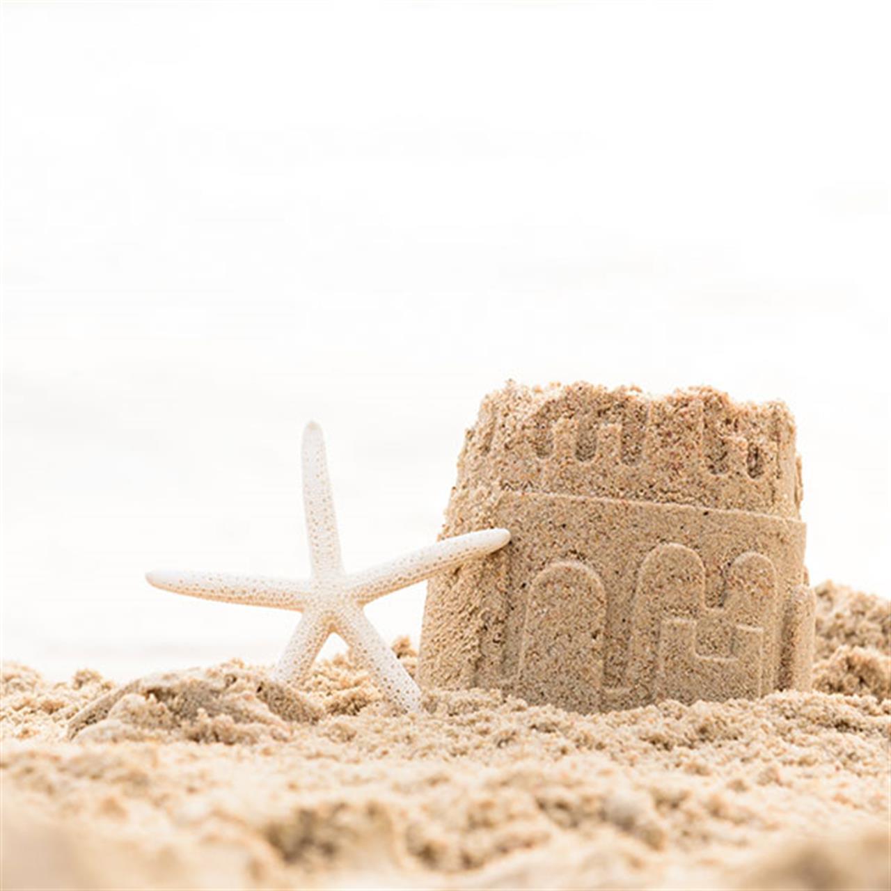 Beach Sand Sculptures Sandcastle Lessons
