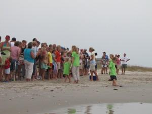 More than 100 people gathered at Beach Access 35 to see the turtles release.