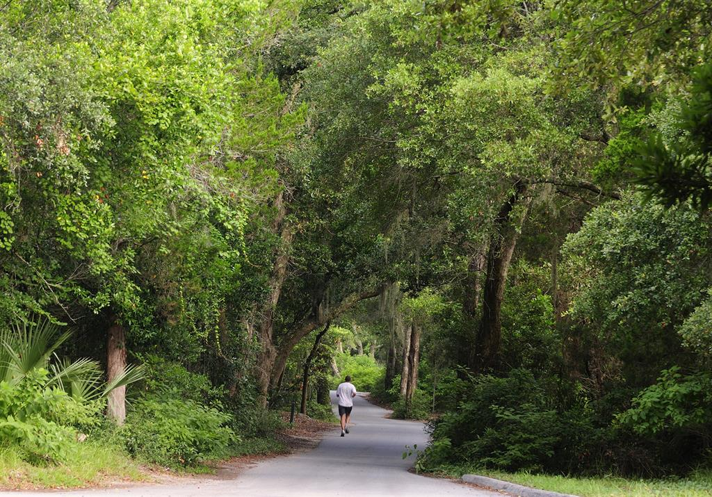 hiking on bald head island offers all season excitement